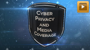 Robinson Insurance Brokers: Cyber Privacy and Media Coverage